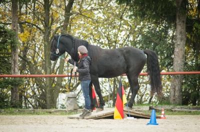 Schweizermeisterschaft Horseathlon